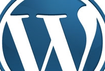 Wordpress Login-Seite